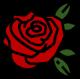 rosa-soluciones